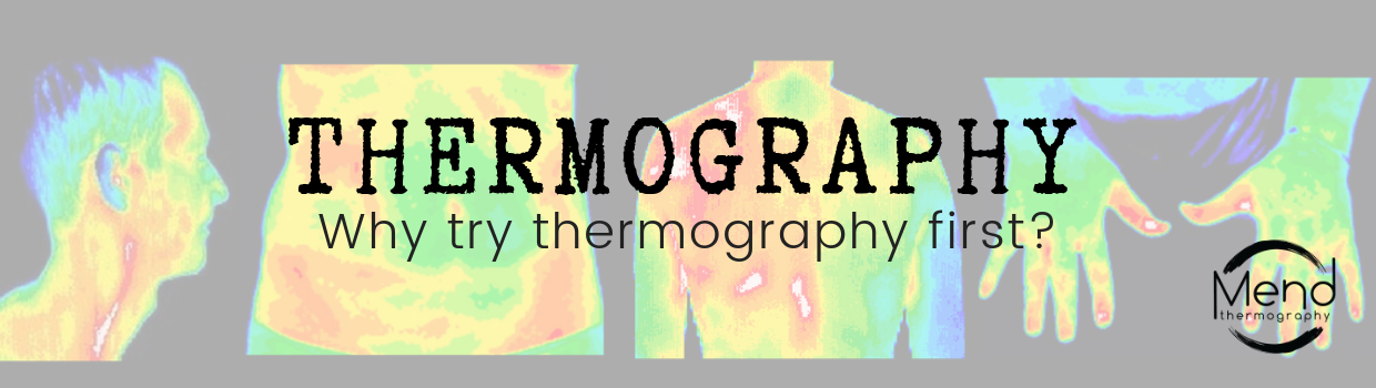 thermography des moines iowa